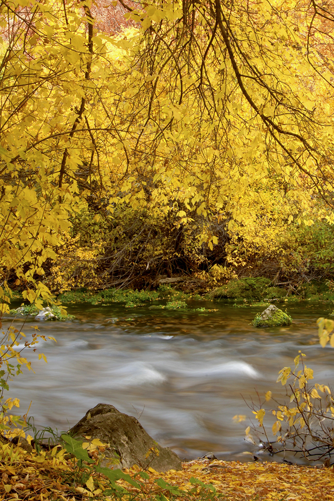 photographyTour/Logan River at Wood Camp - 72 dpi.jpg, Autumn at Wood Camp on the Logan River